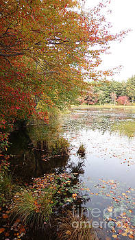 The Paths of Arcadia in Autumn by Leslie M Browning