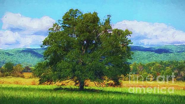 The Tree # 2 by Geraldine DeBoer