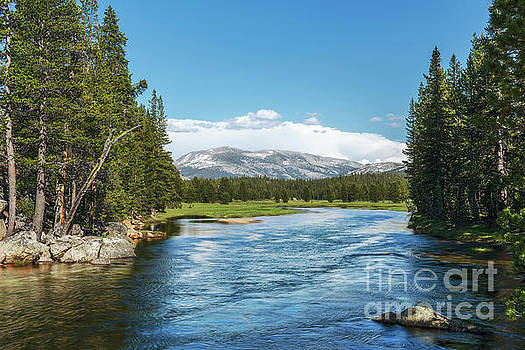 Tuolumne River by Sharon Seaward