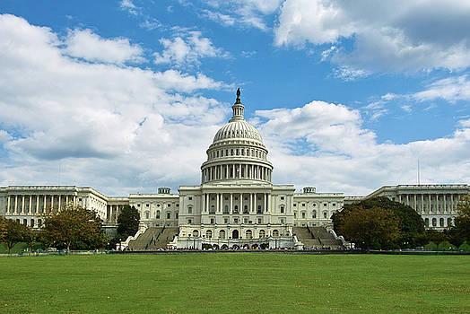 US Capitol Washington DC Negative by Kimberly Blom-Roemer