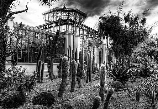 Victorian Palm House by Wayne Sherriff