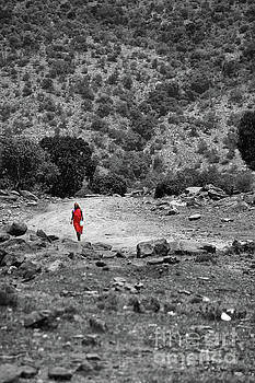 Walk  by Charuhas Images