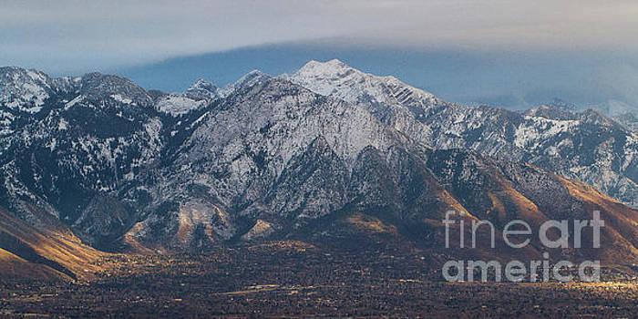Wasatch Mountains from Ensign Park by Denise Lilly