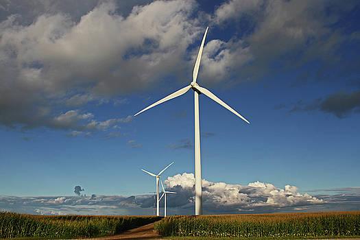 Wind Turbines by Steve Yezek