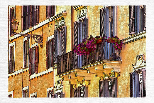 David Pringle - Window Boxes