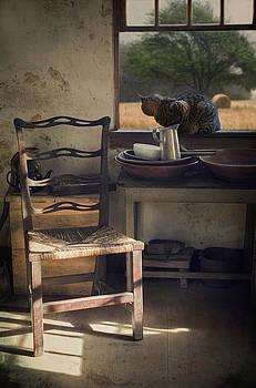 Window Seat by Robin-Lee Vieira