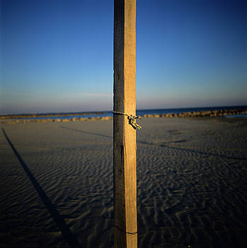 BERNARD JAUBERT - Wooden post