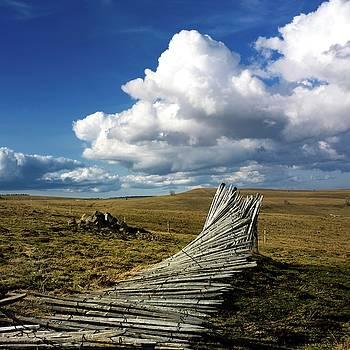 BERNARD JAUBERT - Wooden posts