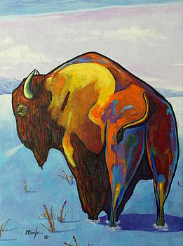 Twenty Below - Bison by Joe  Triano