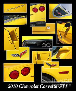 Gary Gingrich Galleries - 2010 Chevrolet Corvette GT1