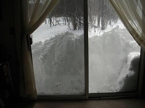 2011 Chicago Blizzard by Deborah Finley
