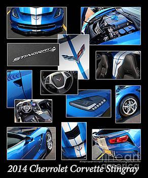 Gary Gingrich Galleries - 2014 Chevrolet Corvette Stingray - Blue