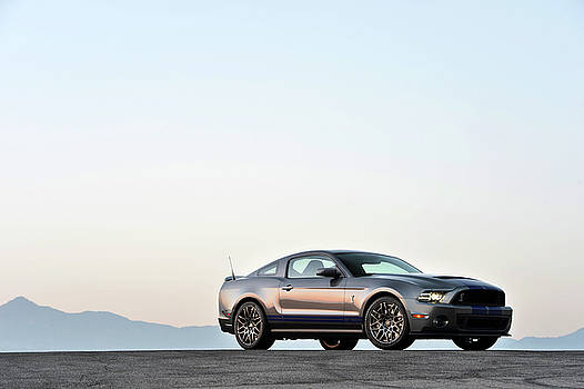 2014 Shelby GT500 by Drew Phillips