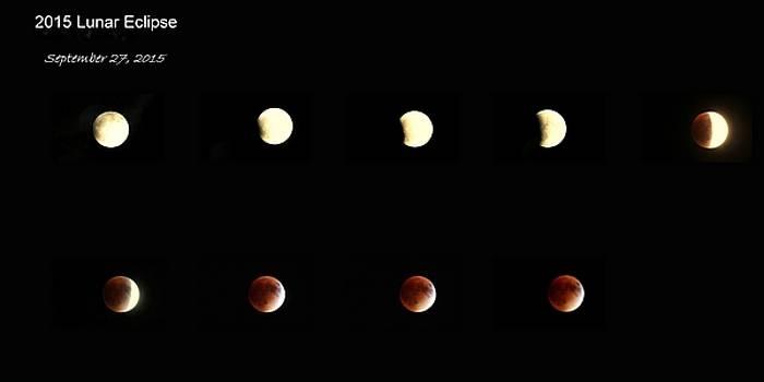 Rosanne Jordan - 2015 Lunar Eclipse