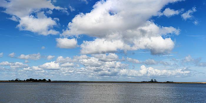 201503140-056P Apalachicola River 1x2 by Alan Tonnesen