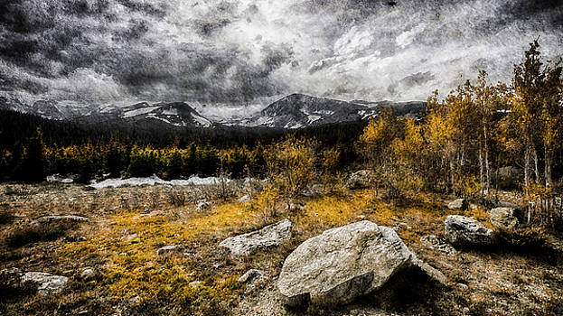 2016 Art Series #11 by Garett Gabriel