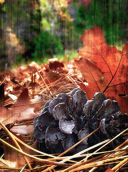 2016 Art Series #26 by Garett Gabriel