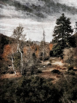 2016 Art Series #27 by Garett Gabriel
