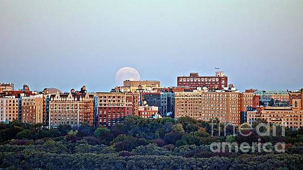2016 Beaver Supermoon Over NYC by Lilliana Mendez