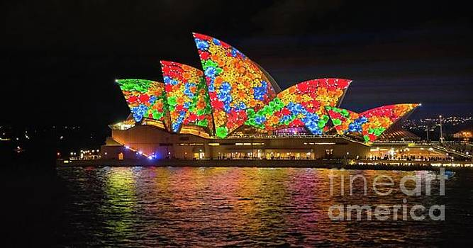 2016 Sydney Vivid 11 by Paul Woodford