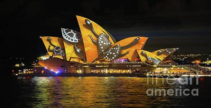 2016 Sydney Vivid 8 by Paul Woodford