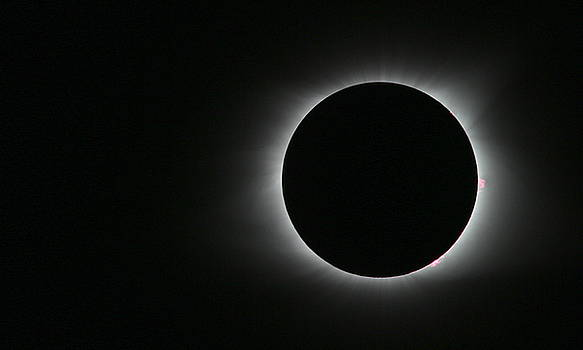 2017 Solar Eclipse Awesome Corona by Emily Spivy