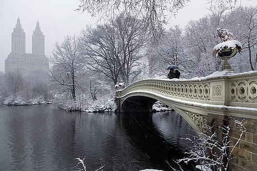 2018 Nor'easter on the Bow Bridge in Central Park by Cameron Dixon