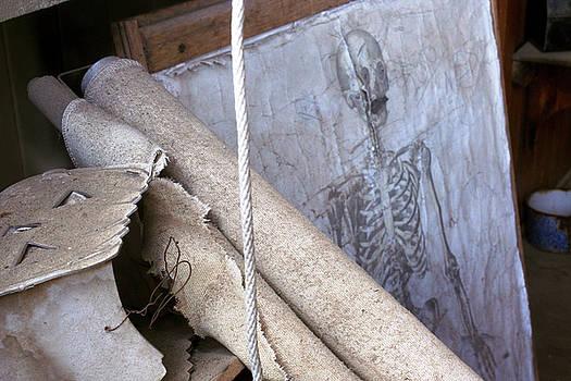 208 Bones by Ansate Jones