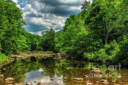 Williams River Spring by Thomas R Fletcher
