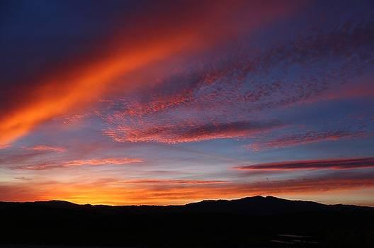21216 Sunset by Carol Welsh