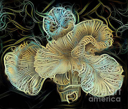 Beautiful undersea coral by Amy Cicconi