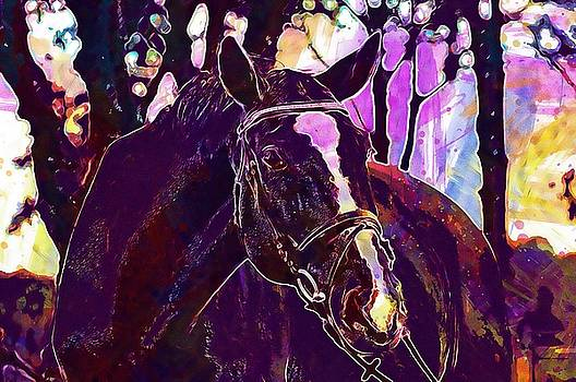 Horse Animal Ride Reiterhof Brown  by PixBreak Art