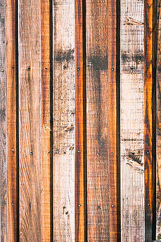 Wood background by Tom Gowanlock