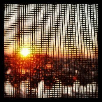 Instagram Photo by Drew Hutto