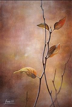 Colours Of Autumn by Ewa Gawlik