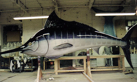 25 foot Marlin by Patrick RANKIN