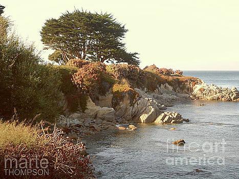 Marine Gardens by Marte Thompson