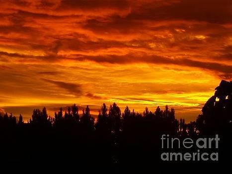Sunset by Joyce Woodhouse