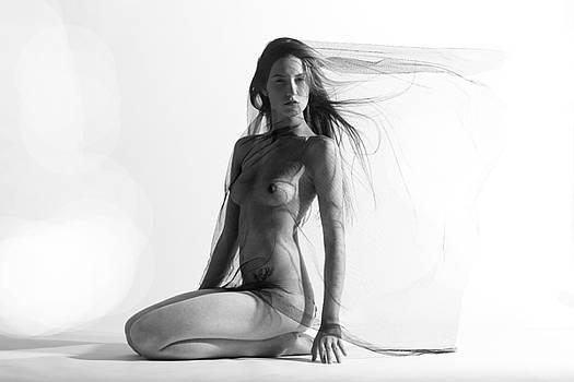 True Simplicity by Laurent Sylla