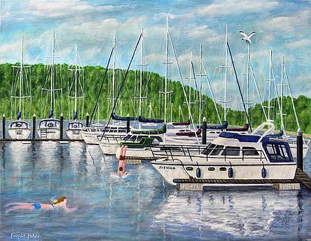 Lake Windermere Marina - Lake District by Ronald Haber
