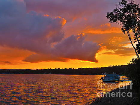 After the storm by Brenda Ketch