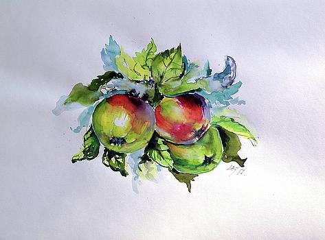 Apples by Kovacs Anna Brigitta