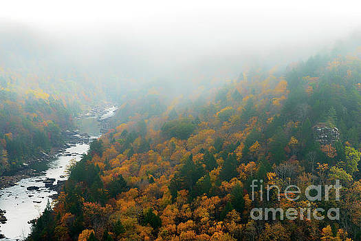 Autumn Fog Gauley River by Thomas R Fletcher