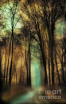 Autumn moon, winter on the way by Gina Signore