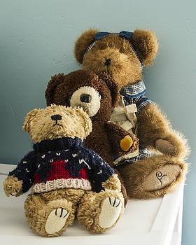 Guy Shultz - 3 Bears