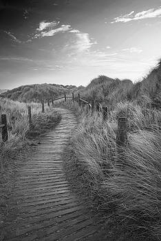 Beautiful black and white sunrise landscape image of sand dunes  by Matthew Gibson