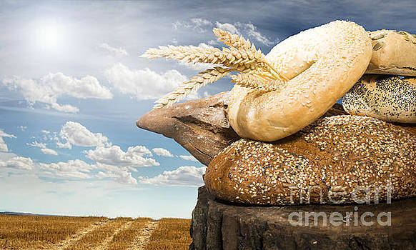 Bread and wheat cereal crops by Deyan Georgiev