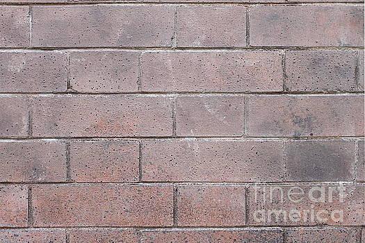 Brick Wall by Henrik Lehnerer
