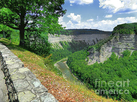 Canyon by Raymond Earley