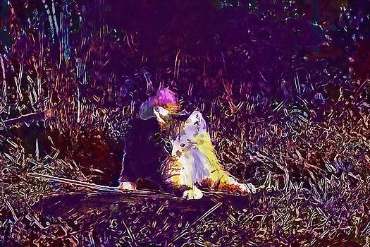 Cat Kitten Cat Baby Young Cat  by PixBreak Art